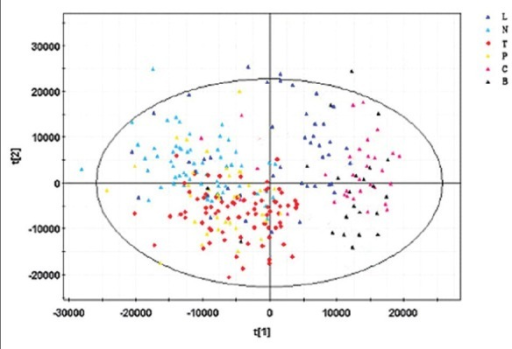 Principal component analysis (PCA) model. PCA scores plots of the SIMCA-P + 12.0.1.0 generated data, showing tuberculosis (TB) patients versus healthy controls and the non-TB group collected serum samples before the removal of 'noise' and interfering compounds from the dataset. : TB group; : Healthy control; : Pulmonitis subgroup; : Lung cancer subgroup; : COPD subgroup; : Bronchiectasis subgroup.