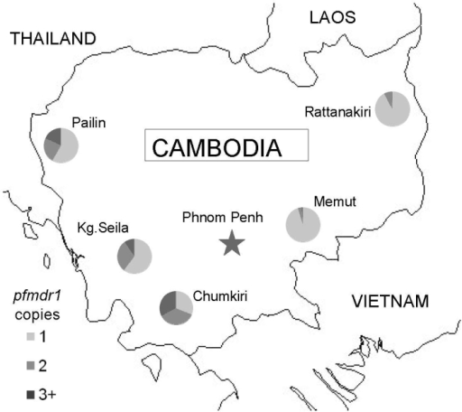 Map of Cambodia with locations of surveillance sites and proportion of isolates containing 1, 2, or >3 copies of pfmdr1, May 2004–December 2006.