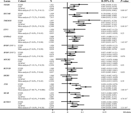 Meta-analysis for summary statistics of the association between variants in the obesity susceptibility loci with BMI in the EYHS, CHP (28), and ALSPAC (20). I2 and P values for heterogeneity between cohorts are provided. For associations within cohorts, effect sizes (B) and 95% CIs are shown; for the meta-analysis, P values for effect sizes are additionally provided.