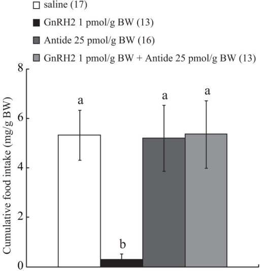 Effect of ICV administration of Antide on the anorexigenic action of GnRH2. The results are expressed as a percentage of the control, i.e., vehicle-injected, fish. Each column and bar represents the mean and SEM, respectively, and the numbers in parentheses in the panels indicate the number of fish in each group. Significance of differences among experimental groups was evaluated by two-way ANOVA with the Bonferroni's method in comparison with the vehicle-injected group (**P < 0.01).
