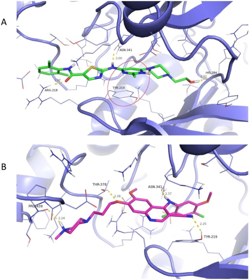 3D Docked Pose and Interactions of dasatinib and bosutinib with TβR-I 3D rendering of the binding pose of (A) dasatinib and (B) bosutinib docked into TβR-1.Protein is represented by purple carbon cartoon representation with residues surrounding a ligand are in line representation. Bosutinib is colored with magenta carbons and dasatinib with green carbons. Hydrogen bonds represented by dashed yellow lines with distances (gray) and interacting residue (black) labeled. A π-π stacking interaction between the phenyl of TYR-219 and the pyrimidine of dasatinib is circled in red.