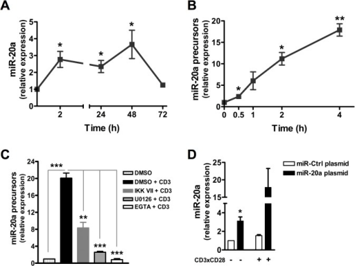 Expression of miR-20a and miR-20a precursors in human naïve CD4+ T cells.Human naïve CD4+ T cells were stimulated with plate-bound CD3 and CD28 mAbs for the indicated time periods. Quantification of (A) miR-20a and (B) miR-20a precursors (both pri- and pre-miRNAs) was performed using RT qPCR. (C) Naïve CD4+ T cells were also preincubated with DMSO, U0126 (10 μM), IKK VII (200 nM) and EGTA (10 mM) for 30 minutes. Subsequently, samples were either left unstimulated or stimulated with plate-bound CD3 for 4 hours at 37°C. Expression of miR-20a precursors was quantified using RT qPCR. (D) Quantification of miR-20a level upon overexpression. Human naïve CD4+ T cells were transfected with plasmids encoding either miR-20a or miR-control (miR-Ctrl). Cells were either left unstimulated or stimulated for 2 hours with CD3xCD28 mAbs. Quantification of miR-20a in both resting and activated cells was performed using real-time PCR. Unless otherwise mentioned, all the data was normalized to either resting cells or unstimulated control transfected cells. Data represent arbitrary units ± SEM of at least 3 (A, C, D) and 2 (B) independent experiments. Significant P values were done by using Student's t Test. (*, P < 0.05; **, P < 0.01; ***, P < 0.001).