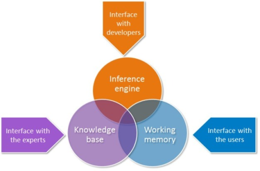 The components of an expert system.