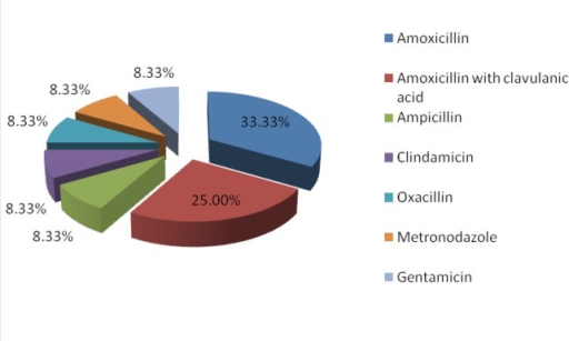 Percent distribution of the main types of antibiotics used by the patients included in the study group.