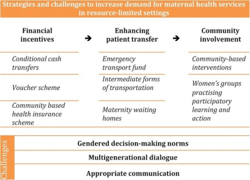 Conceptual framework for strategies to overcome demand-side barriers to maternal healthcare access and their challenges