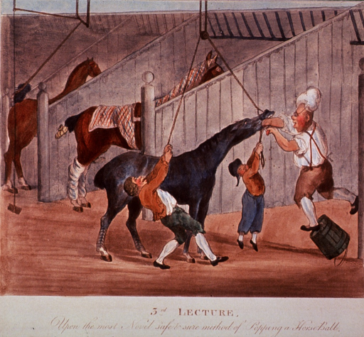<p>The third in a series of four numbered prints satirizing the recently opened Royal Veterinary College in London.  In this print, two men with ropes tied around the jaw of a horse, pull in opposite directions to hold the jaw open; another man, falling off an overturned bucket, is attempting, with some difficulty, to put a ball (pill) down the horse's throat. Two horses stand in stable stalls in the background.</p>