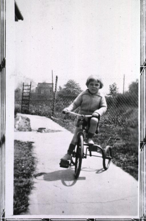 <p>View of a child riding a tricycle on a cement walkway.</p>