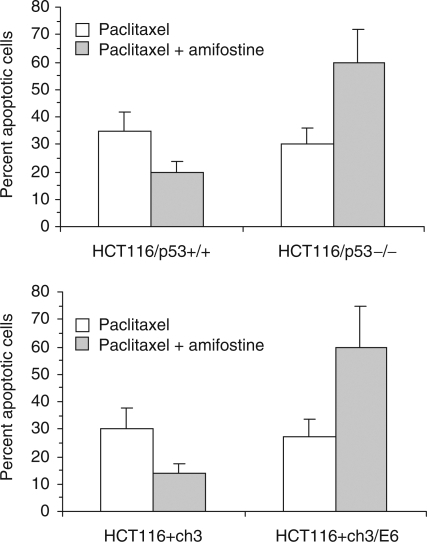 Effect of p53 protein on amifostine-induced cytoprotection. HCT116 cells were exposed to paclitaxel for 24 h in the absence or presence of amifostine. The fraction of apoptotic cells was determined by supravital fluorescence microscopy at 48 h after the beginning of drug exposure. Open columns, cells treated with paclitaxel alone; shaded columns, cells treated with paclitaxel and amifostine. Columns and bars represent mean±s.d. of three independent experiments.