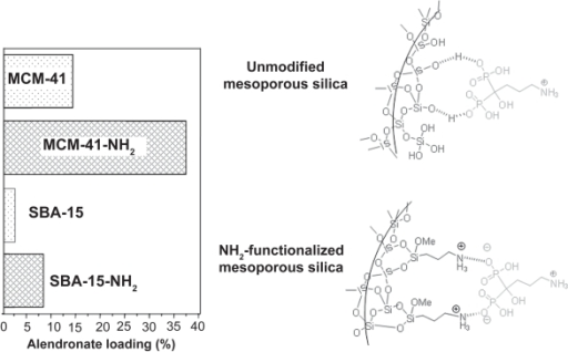 Alendronate adsorption on MCM-41 and SBA-15 mesoporous materials before and after functionalization with amino groups.