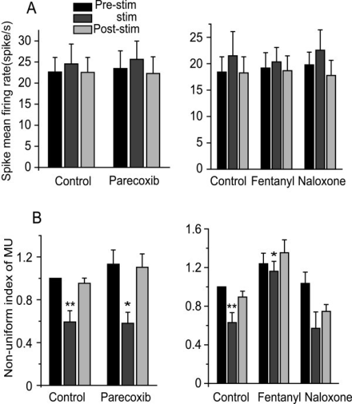 The effects of parecoxib and fentanyl on MU (Multi-Unit) and Non-uniform index of MU recordings. A: Spike mean firing rate from MU recordings were not altered in the presence of nociceptive stimulation. B: The non-uniform index of MU was decreased when nociceptive stimulus was applied (control), indicating that the neuronal firing pattern was more uniform under nociceptive stimulation than during the resting state. Fentanyl partially inhibited this response while parecoxib had no effect. *P < 0.05, **P < 0.01, #P < 0.001.