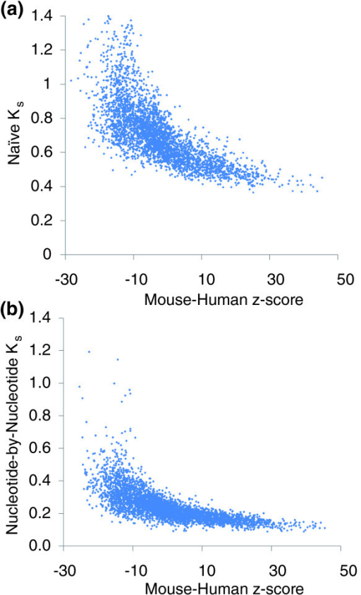 Comparison of COMIT z-scores to maximum likelihood Ks scores. There is a clear correlation between mouse-human z-scores and mouse-human Ks based on (a) naïve codon completion or (b) nucleotide-by-nucleotide Ks. These correlations indicate that the qualitative conservation of many motifs is not method-dependent.