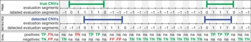 Definitions for the evaluation of copy number detection methods. A genome is split into equally sized evaluation segments of a length shorter than the shortest CNV. Top panel: Knowing the true CNV regions (green), the evaluation segments are labeled as class 1 (CNV segment) or class −1 (non-CNV segment). Middle panel: A CNV detection method classifies each evaluation segment into CNV segments (blue, class 1) and non-CNV segments (class −1). Bottom panel: In the first line, positives (known CNV regions) are divided into true positives (TP, green) and false negatives (FN, red). In the second line, negatives (no overlap with known CNV regions) are divided into true negatives (TN, green) and false positives (FP, red). Segments partly overlapping with known or predicted CNV regions are not considered ('na').