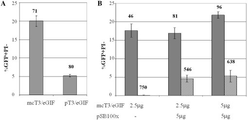 Transient and stable transfection of Ba/F3 cells using SB transposon system. (A) Comparison of transient transfection efficiency by nucleofection delivery of plasmid and minicircle bearing T3/eGIF transposon. Ba/F3 cells were nucleofected with 5 µg of either plasmid pT3/eGIF or minicircle mcT3/eGIF. Flow cytometry was performed 24 h after nucleofection. (B) Integration of T3/eGIF transposon. Ba/F3 cells were nucleofected with varying DNA amounts of transposon minicircle mcT3/eGIF and transposase plasmid pSB100x. Flow cytometry was performed 24 h (gray bars) and 7 days (striped bars) after nucleofection to assess transient and stable transfection efficiency, respectively. Bars represent SD of three independent transfections. Averages of mean fluorescence intensity of GFP+/PI− populations are indicated above the graphs in RFU.