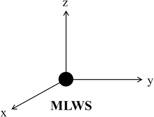 MLWS as a new starting point.x, y and z axis each represent reoriented transverse, anteroposterior and vertical axis.