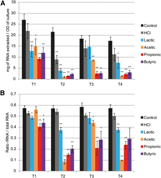Weak organic acids reduce total RNA and ribosomal RNA in Candida albicans: Total RNA content and relative rRNA abundance in cell pellets used for RNA deep-sequencing experiment. (A) Total RNA extraction yield quantified by RiboGreen assay. (B) rRNA vs. total RNA ratio estimated by areas under the peaks found on Bioanalyzer electropherograms. n = 4; *P < 0.05; **P < 0.01.