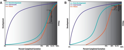 Preterm birth in humans may result in greater fitness differential compared to non-human primates. Normal fetal growth (purple) is similar between humans (A) and non-human primates (B). Unlike fetal growth, humans experience a growth spurt in brain development (teal) later in gestational time compared to non-human primates. As a result, the fitness (orange) differential between a pre-term human born at 80% completed gestation and a human born at 92.5% completed gestation could be substantially larger than that of non-human primates