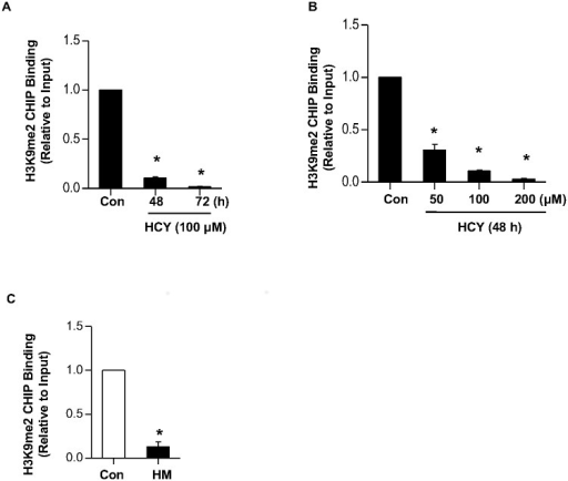 Hcy decreased the level of H3K9me2 on the COL1A1 promoter.(A) (A-B) LO2 cells were treated with 100μM of Hcy for indicated time period (A), or indicated concentration of Hcy for 48 h (B), and then harvested for ChIP assay by using anti-H3K9me2 antibody. The changes of H3K9me2 on the COL1A1 promoter were examined by q-ChIP PCR. Data are means±SD of three independent experiments. *p<0.05 versus untreated cells. (C) Liver tissues of wild type mice and HHcy mice were collected for ChIP assay by using anti-H3K9me2 antibody. The changes in H3K9me2 on the Col1α1 promoter were examined by q-ChIP PCR. Data are expressed as mean±SD, n = 6. *p<0.05 versus mice fed with regular rodent chow.