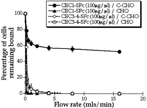 Lack of adhesion activity of a construct lacking EC domains 1 and 2 (CEC3-4-5Fc) by laminar flow assay. Attachment of C-CHO cells to high concentrations of CEC3-4-5Fc (100 μg/μl) compared with CEC1-5Fc. The experiment was performed in triplicate and the mean ± SEM is shown.