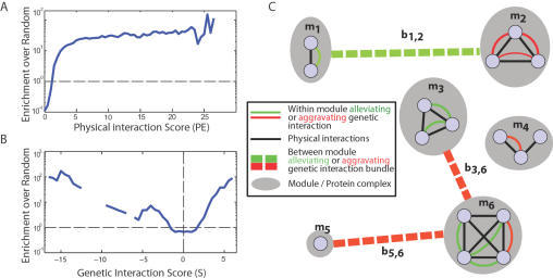 Combining physical and genetic interactions to define protein complexes.Correspondence of the physical interaction score (A) and the genetic interaction score (B) with the known small-scale, manually annotated protein complexes in MIPS. To compute the enrichment over random (y-axis), one first computes the fraction f of interactions at each score x that fall inside a MIPS small-scale complex (bin size of 1.5). The enrichment is the ratio f/r, where r is the fraction of random protein pairs within MIPS complexes. (C) Proteins are grouped into physically interacting sets called modules (gray ovals; m1–m6). Pairs of modules may be linked to indicate a functional relationship (dotted lines; b1–b6). The assignment of proteins to modules along with the list of inter-module links comprises the state of the system.