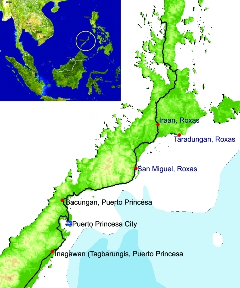 Map of Palawan, the Philippines, showing areas (red dots) where human Plasmodium knowlesi infections were confirmed (obtained from ESRI ArcGis 9 Media Kit and Provincial Development Office, Palawan, the Philippines).