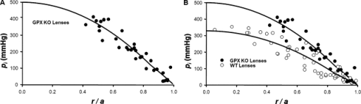 The effect on intracellular hydrostatic pressure of reducing the number of gap junction channels coupling the differentiating and MFs. (A) The standing hydrostatic pressure gradient in lenses from GPX-1 KO mice, which were ∼2 mo old. The hydrostatic pressure (pi mmHg) is graphed as a function of normalized distance (r/a) from the lens center, where a (cm) is the lens radius, and r (cm) is the distance from the lens center. The data are from 10 lenses from five mice. The pressures at two to six radial locations were recorded from each lens. The smooth curve is the best fit of Eq. 7 to the data. Because the manometer can only measure ∼400 mmHg, the pressures at locations closer to the lens center than ∼0.4a could not be determined, other than that they exceeded 400 mmHg. The MF coupling conductance in the GPX-1 KO lenses was ∼60% of that in WT lenses (Wang et al., 2009). Based on the derivation of Eq. 7, the pressure gradient should be approximately inversely proportional to the MF coupling conductance, or ∼1.67 times greater than in WT. The best fits of the model to the data give the ratio of pi(0) in GPX-1 KO/WT lenses as 1.52. (B) An over-plot of the GPX-1 KO and WT data.