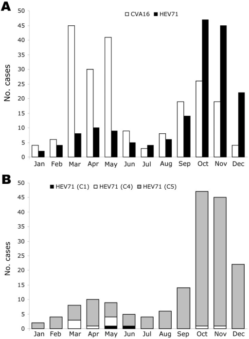 Monthly distribution of 387 cases of hand, foot, and mouth disease (HFMD) associated with isolation of either coxsackievirus A16 (CVA16) (214 cases) or human enterovirus 71 (HEV71) (173 cases), southern Vietnam, 2005. RNA was extracted from cells inoculated with vesicle, throat swab, or stool specimens. Partial VP4 gene sequences were amplified by reverse transcription–PCR (RT-PCR) by using specific primers (22), the amplified cDNA sequenced, and the serotype and/or genogroup specificity determined by BLAST analysis. A) Monthly distribution of CVA16 and HEV71-associated HFMD cases. B) Monthly distribution of 173 HFMD cases associated with HEV71 infection with strains belonging to subgenogroups C1, C4, or C5.
