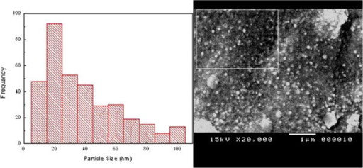 SEM image and particle size histogram of agar/silver nanoparticles.
