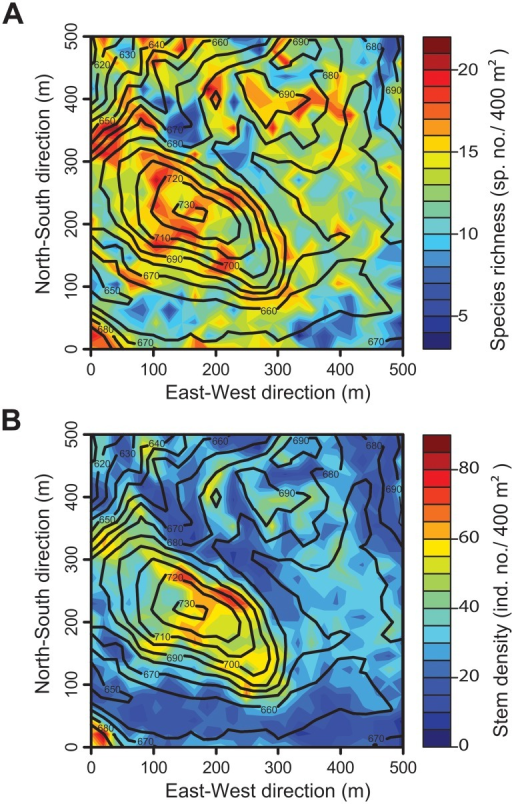Fushan Forest Dynamic Plot.Spatial variations in (A) species richness and (B) woody plant density. Contour lines indicate the elevation (m.a.s.l.). Individuals with diameter at breast height >10 cm are shown.