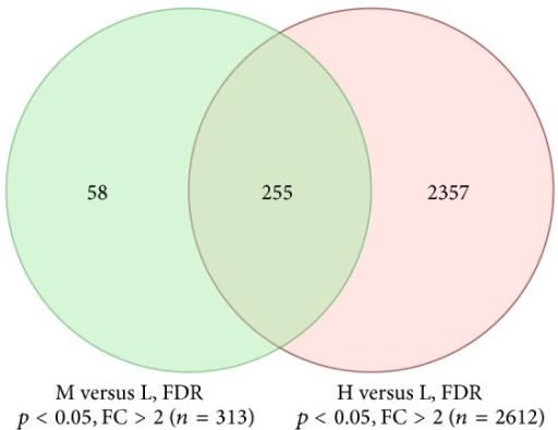 Number of significant genes between the two comparisons: H versus L and M versus L. FC: fold change.