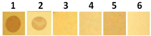 Specificity of s-dot ELISA. 1-OTA; 2-OTB; 3-AFB1; 4-FB1; 5-DON; 6-PBS (negative control).