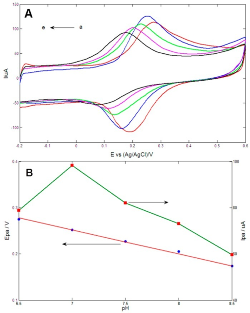 (A) Cyclic voltammetrys of Au1Pt1NPs-GR/GCE in 0.1 M PBS (pH values from a to e: 6.5, 7, 7.5, 8.0, 8.5) containing 0.2 mM DA at scan rate of 100 mV/s; (B) Plots of anodic peak potential (Epa) and anodic peak current (Ipa) vs. pH value.