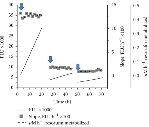 Representative real time tissue responses and resorufin metabolism in the ex vivo bioreactor. The rate of metabolic activity is given by the slope and metabolic activity per unit time is correlated to the time duration of viability experiment in ex vivo conditions similar to those displayed in Figure 5. The media change at each interval is indicated in the figure with arrow mark.