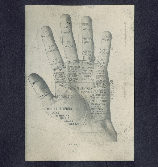 <p>Image of left hand with fingers and palm sectioned into different areas. Text is printed on the hand, attributing various emotions or characteristics to each section.</p>