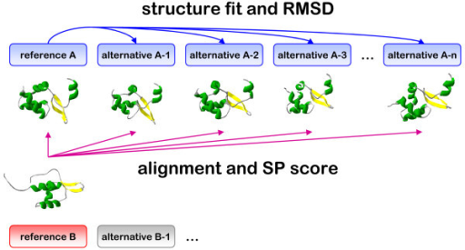 Overview of the approach. SP scores are calculated to describe the differences at the sequence level between the reference and alternative structural alignments. In addition each alternative structure (either obtained with molecular simulation or from the PDB) is fit onto the reference structure and root mean square deviations (RMSDs) are calculated.