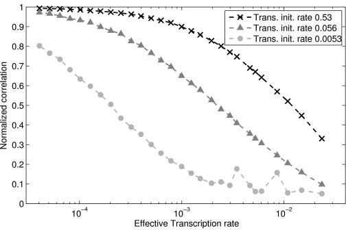 Normalized maximum correlation between RNA and protein time series. The higher the rate of translation initiation (and thus higher protein degradation to keep the mean the same), the more correlated the fluctuations in protein and RNA levels become, as measured by the normalized maximum correlation. This is because the protein levels follow any fluctuations in the RNA levels faster. Similarly, increasing the rate of transcription initiation, while maintaining the rate of translation initiation constant, decreases the correlation between fluctuations in protein and RNA levels.