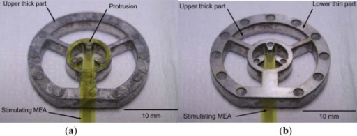 Fixture for stimulation MEA. (a) Upper thick part with MEA on polyimide (shown upside down). (b) Lower thin part placed on top to thick part (shown upside down).