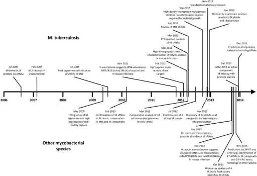 Timeline of sRNA developments in mycobacteria. Progress in M. tuberculosis (upper) and other mycobacterial species (lower) are shown in parallel in chronological order. The surge of studies in the last few years suggests momentum toward further discovery, mechanistic studies, and medical applications.