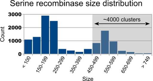 "Histogram of serine recombinase lengths.All proteins with an InterPro (Hunter et al., 2012) serine recombinase catalytic domain (IPR006119; 35,076 entries) were clustered (13,019 clusters). The mean protein length of each cluster was computed, and the distribution of these lengths is presented here as a histogram. The list of putative serine recombinases was assembled with a custom script that scanned the entire InterPro ""Protein matched complete"" XML flatfile (∼75 GiB uncompressed; downloaded on Feb. 14, 2014) for proteins with an IPR006119 domain (35,076 proteins found). Protein sequences were downloaded from UniProt (UniProt Consortium, 2012) and were validated via CRC64 checksum comparison with InterPro. CD-HIT (Li and Godzik, 2006) version 4.6.1 was used to perform the clustering with the following parameters: 95% identity cutoff, 95% size cutoff, five character word size. Because the smallest characterized serine integrases (A118 and U153, accession numbers Q9T193 and Q8LTD8, respectively) are both 452 residues in length, we estimate that there are at least 4,000 unique putative large serine recombinases in the InterPro database as of February 14, 2014."