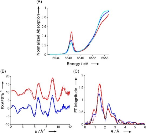 A) Comparison of the normalized Mn K-edge XAS data for MnV(O)(TBP8Cz) with zero (red), 10 (dark blue) and 100 (light blue) equivalents of added Bu4N+CN− in benzonitrile. B) EXAFS data (solid lines) and fits (dashed lines) for MnV(O)(TBP8Cz) (red) and MnV(O)(TBP8Cz)+100 equivalents of Bu4N+CN− (blue). C) The corresponding FTs (solid) and fits (dashed).