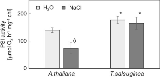 A comparison of PSI activities measured with oxygen electrode (A) and with H2O2 electrode (B). Thylakoids were isolated from leaves of Arabidopsis thaliana and Thellungiella salsuginea plants irrigated with water and with NaCl solution. Salinity of 0.15 and 0.3 M NaCl was used for A.t. and T.s., respectively. Data represent mean ± sd (n = 4). 'Diamond' indicates a significant difference between control and salinity-treated plants. 'Asterisk' indicates a significant difference from A.t. from the same treatment.