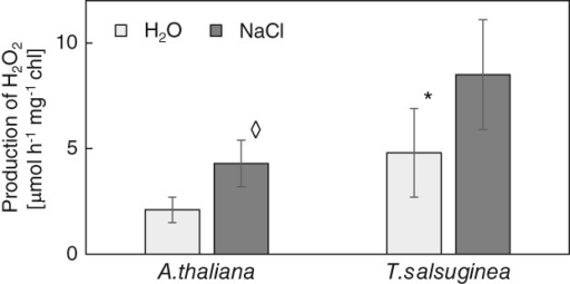 Rates of H2O2 production by illuminated thylakoids from Arabidopsis thaliana and Thellungiella salsuginea plants irrigated with water or with NaCl solution. Salinity of 0.15 and 0.3 M NaCl was used for A.t. and T.s., respectively. Data represent mean ± sd (n ≥ 5). 'Diamond' indicates a significant difference between control and salinity-treated plants. 'Asterisk' indicates a significant difference from A.t. from the same treatment.