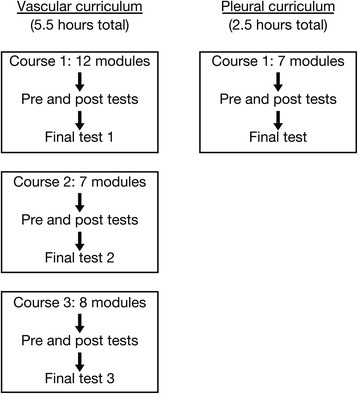 e-learning curriculum organization. The vascular (5.5 h duration) and pleural (2.5 h duration) curricula are divided into three and one individual courses, respectively. Each course includes several modules and tests.