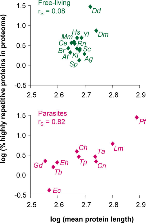 Comparative genomics of repeat-containing proteins. Double logarithmic plot of the percentage of highly repetitive (P < 10-10) proteins vs. mean protein length of eukaryotic proteomes. Ag, A. gambiae; At, A. thaliana; Br, B. rerio; Ce, C. elegans; Dd, D. discoideum; Dm, D. melanogaster; Hs, H. sapiens; Kl, K. lactis; Mm, M. musculus; Rn, R. norvegicus; Sc, S. cerevisiae; Sp, S. pombe; Yl, Y. lipolytica; Ch, C. hominis; Cn, C. neoformans; Ec, E. cuniculi; Eh, E. histolytica; Gd, G. duodenalis; Lm, L. major; Pf, P. falciparum; Ta, T. annulata; Tb, T. brucei; Tp, T. parva; rS, Spearman coefficient.