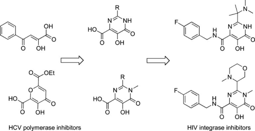 Designof early RAL-like inhibitors: from HCV polymerase to HIVIN inhibitors.