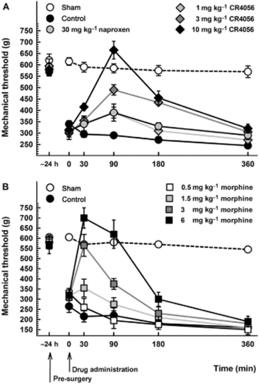 (A) Anti-hyperalgesic effect of CR4056 on postoperative pain-induced mechanical hyperalgesia in male rats (Randall-Selitto test). CR4056 was orally administered 24 h after surgery. Naproxen (30 mg·kg−1; oral) was used as comparison. Data represent the mean withdrawal threshold expressed in grams ± SEM (n = 6 per group). (B) Anti-hyperalgesic effects of morphine on postoperative pain-induced mechanical hyperalgesia in male rats (Randall-Selitto test). Morphine was subcutaneously administered 24 h after surgery. Data represent the mean withdrawal threshold expressed in grams ± SEM (n = 6 per group).