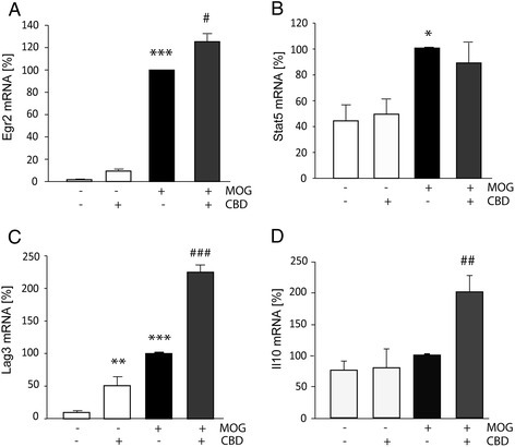 The effect of CBD treatment on EGR2, STAT5, LAG3, and IL-10 mRNA levels in purified TMOGpreviously co-cultured with APC. TMOG cells were co-cultured with adherent APC and stimulated with MOG35-55 in the presence or absence of CBD. TMOG cells were then purified using CD4+ microbeads, lysed, and subjected for mRNA extraction and qPCR analysis using gene specific primers. The bar graphs show the levels of the indicated mRNAs as percentage of the amounts observed following stimulation with MOG35-55. (A) EGR2 mRNA (ANOVA F(3,4) = 211.5, P < 0.001); (B) STAT5 mRNA (ANOVA F(3,12) = 6.1, P < 0.01); (C) LAG3 mRNA (ANOVA F(3,8) = 116.5, P < 0.001); (D) IL-10 mRNA (ANOVA F(3,11) = 9.9, P < 0.01); (n = 2 to 4). Symbols: *P < 0.05, **P < 0.01, ***P < 0.001 vs non-stimulated cells; #P < 0.05, ##P < 0.001, ###P < 0.001 vs MOG35-55-stimulated cells.