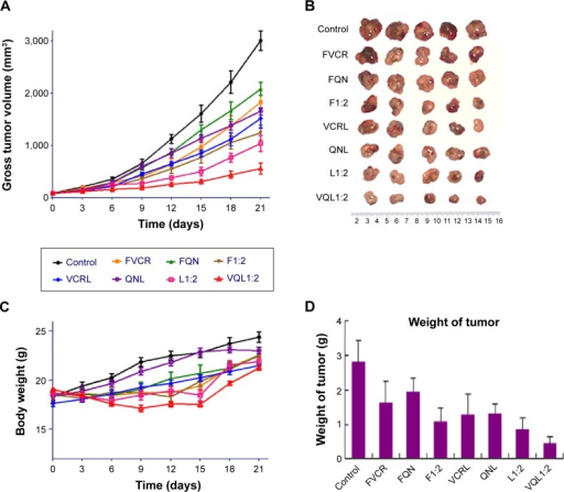 Therapeutic efficacy in A549/T tumor-bearing mice (n=5 per group).Notes: Eight groups of drugs and formulations were injected intravenously into the lateral tail vein of each mouse at a VCR dose of 1.0 mg/kg on days 0, 3, 6, and 9. (A) Tumor growth curves for different groups with various treatments. (B) Photographs of the tumors collected from different groups of mice at the end of treatments (day 21). (C) Change in average body weight in mice with various treatments. (D) Average weights of tumors in each treatment group on day 21. The standard deviation is presented in error bars.Abbreviations: VCR, vincristine; QN, quinine; FVCR, free vincristine; FQN, free quinine; F1:2, free vincristine + free quinine =1:2; VCRL, VCR liposome; QNL, QN liposome; L1:2, VCR liposome + QN liposome =1:2; VQL1:2, VCR and QN codelivery liposome with a ratio of 1:2.