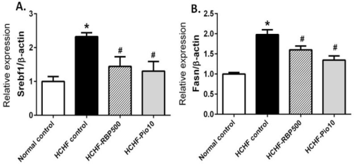 Effects of RBP on expression of lipogenic genes Srebf1 (A) and Fasn (B) in HCHF-fed rats. Oral administration of RBP 500 mg/kg or pioglitazone 10 mg/kg daily for 6 weeks significantly decreased the expression of Srebf1 and Fasn. (*: p < 0.05, significant increase as compared to normal controls; #: p < 0.05, significant decrease as compared to HCHF-control group).