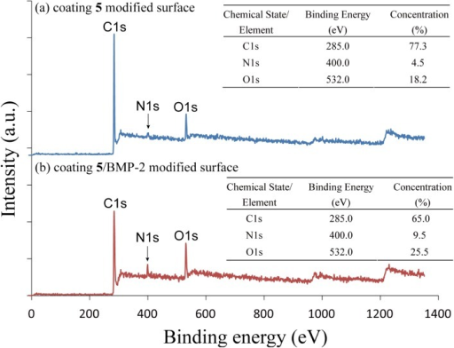 XPS survey spectra of (a) coating 5 modified surface and (b) coating 5/BMP-2 modified surface.The atomic concentration of C, N and O are 77.3%, 4.55% and 18.22% on the coating 5 modified surface and 65.0%, 9.5% and 25.5% on the coating 5/BMP-2 modified surface. The N composition significantly increased due to immobilization of BMP-2.