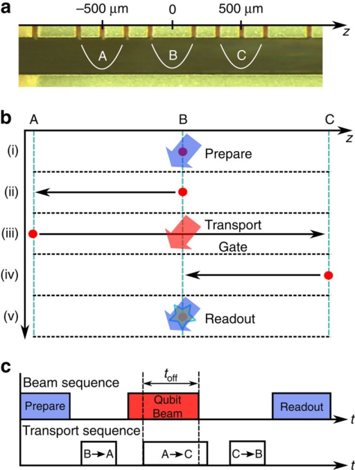 Experimental sequence and timing.(a) The experiment is carried out in three zones of the trap indicated by A, B and C. (b) The experimental sequence involves steps (i) through (v). Preparation and readout are carried out on the static ion in zone B. The qubit evolves while the ion is transported through the laser beam in zone B in a transport operation taking the ion from zone A to zone C. (c) Experimental sequence showing the timing of applied laser beams and ion transport, including shutting off the laser beam during transport.